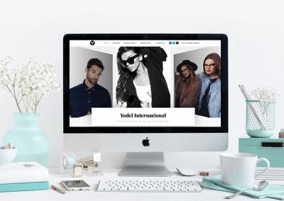 Diseño de pagina web sector óptico